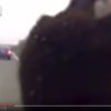 熊と車の事故の瞬間映像、思わず笑ってしまう映像